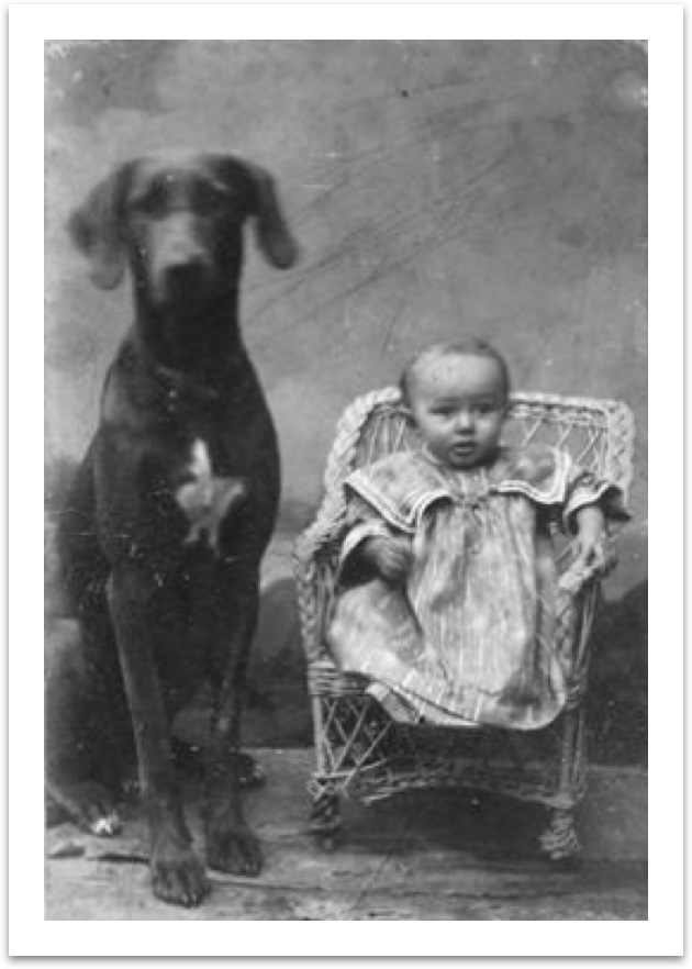 photo of child and dog