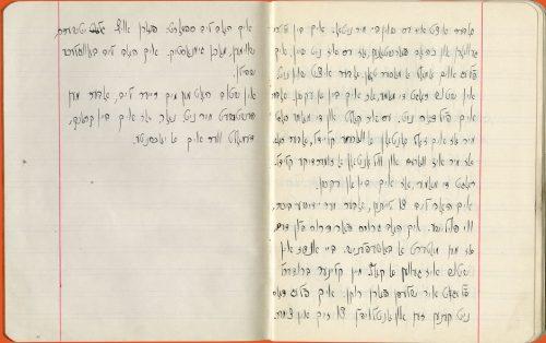 Page of Beba's autobiography